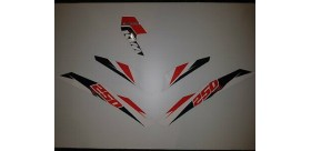 DECAL KIT 250 FREERIDE 2015